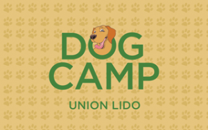 unionlido dog camp